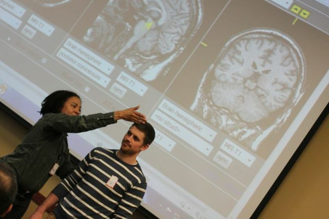 brainScans2